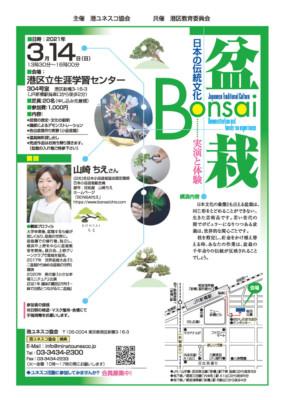 日本の伝統文化 盆栽